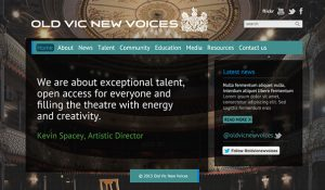 Old Vic New Voices – website redesign